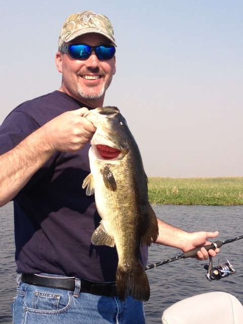 Lake okeechobee fishing great lake okeechobee bass for Lake okeechobee fishing guides