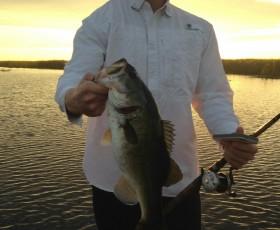 2015 Lake Okeechobee Bass Fishing